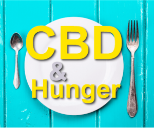 Nine Laws Of Does Cbd Make You Hungry